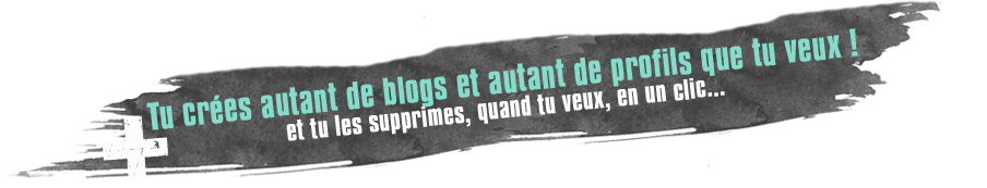 Tu cres autant de blogs et autant de profils que tu veux ! Et tu les supprimes, quand tu veux, en un clic...